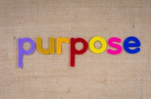 Stock Image 2 - 5Ps of Purpose